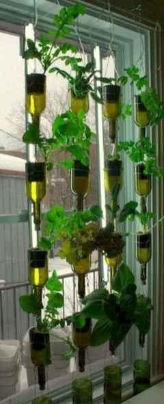 60 easy to try herb garden indoor ideas (13)