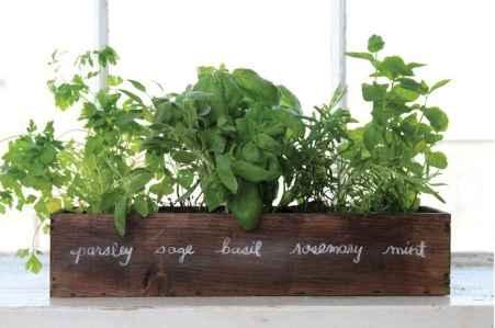 60 easy to try herb garden indoor ideas (51)