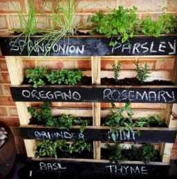 60 easy to try herb garden indoor ideas (6)