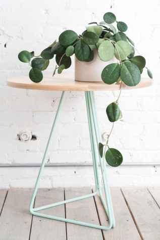 80 brilliant apartment garden indoor decor ideas (42)