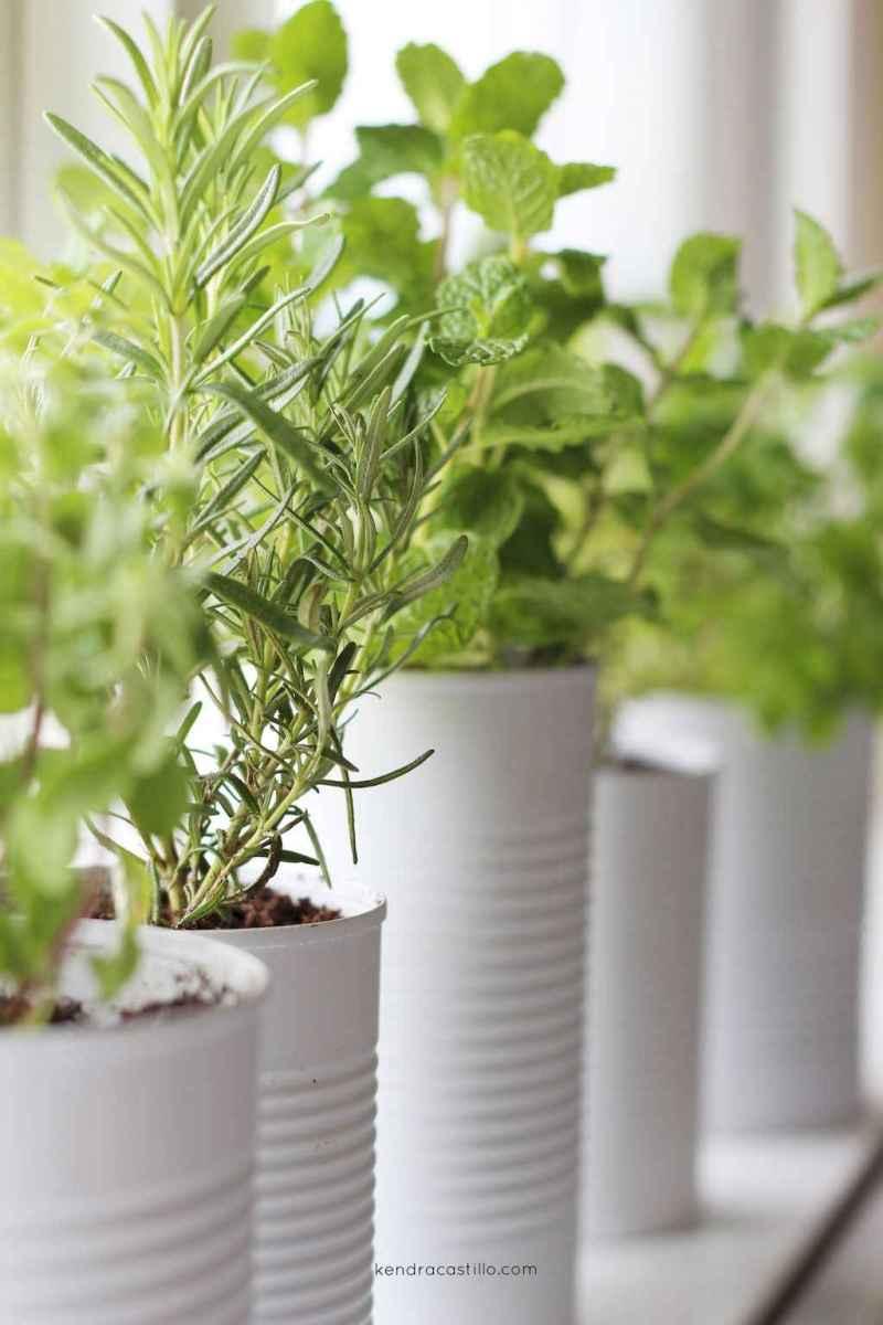 80 brilliant apartment garden indoor decor ideas (45)