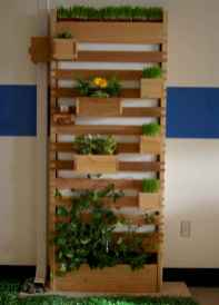 80 brilliant apartment garden indoor decor ideas (60)