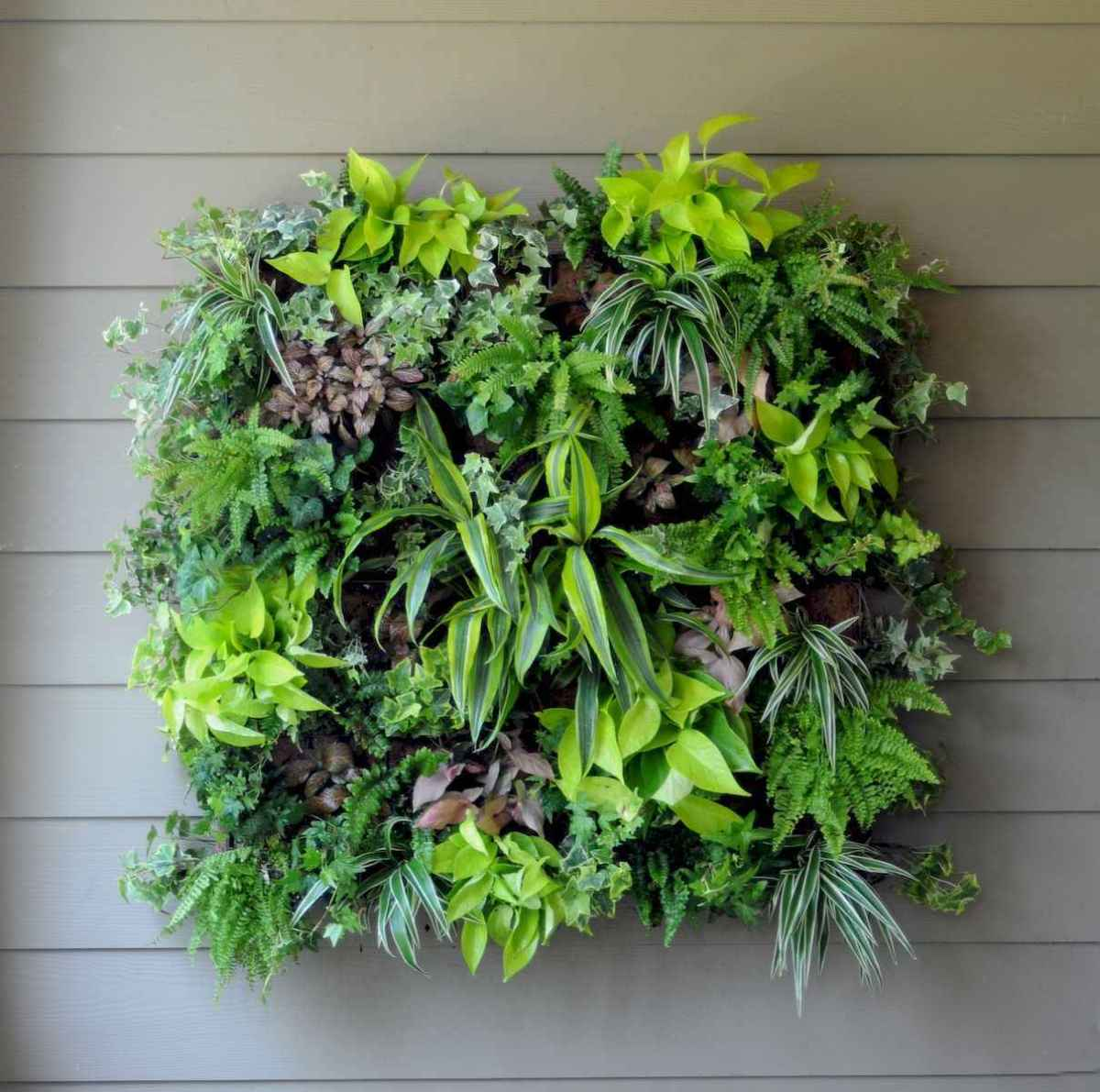 40 beautiful living wall planter garden ideas decorations and remodel (6)