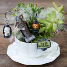 50 easy diy summer gardening teacup fairy garden ideas (36)