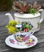 50 easy diy summer gardening teacup fairy garden ideas (37)
