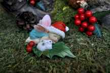 45 beautiful christmas fairy garden ideas decorations (41)
