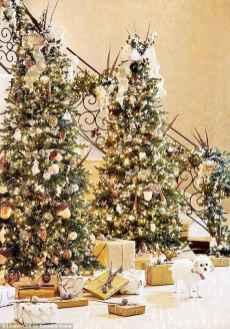 60 elegant christmas decorations ideas (32)