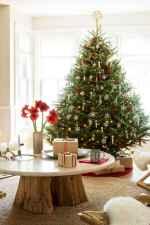60 simple living room christmas decorations ideas (50)