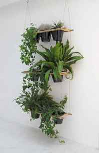 30 fantastic vertical garden indoor decor ideas (28)