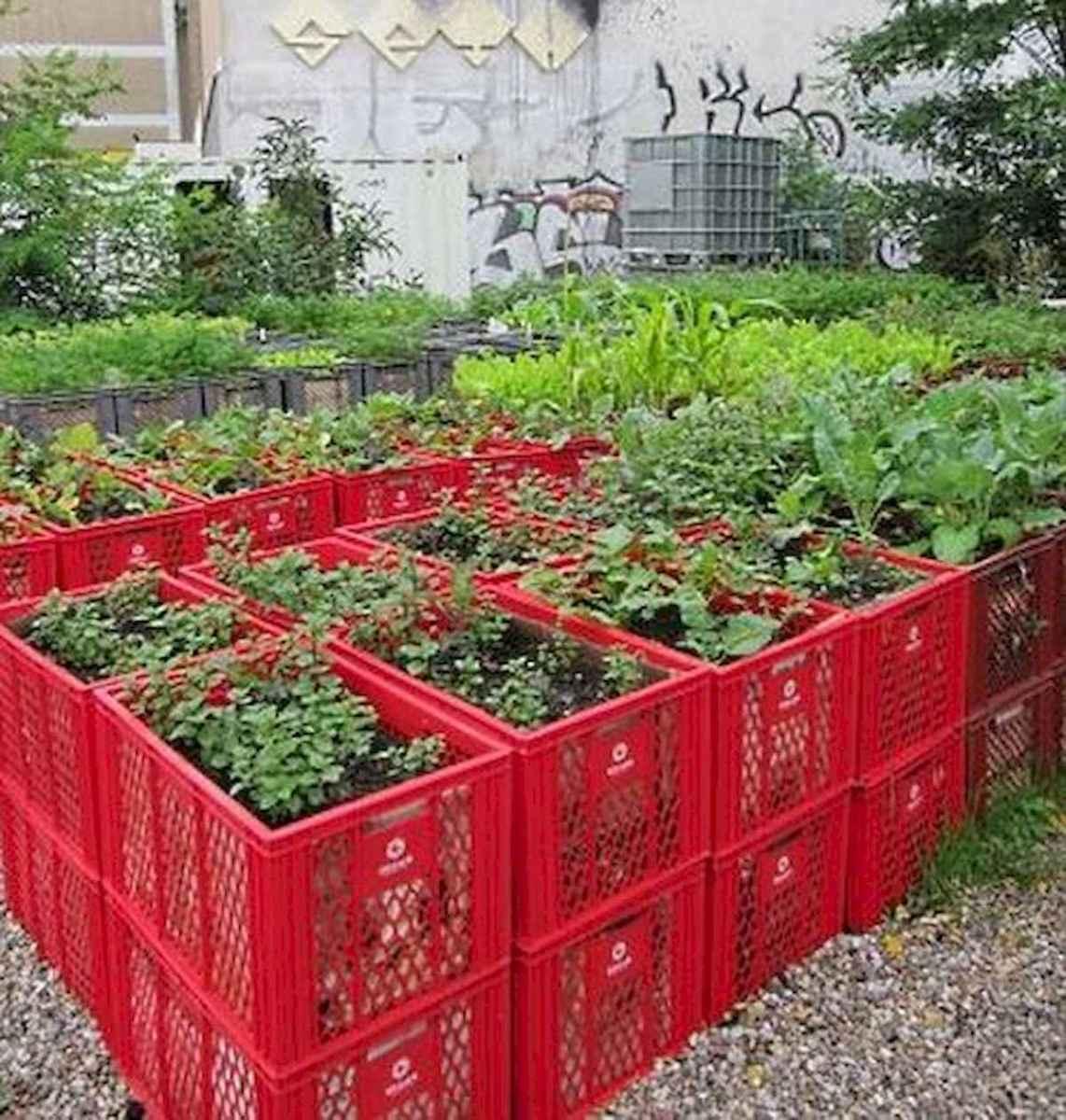 35 stunning vegetable backyard for garden ideas (22)