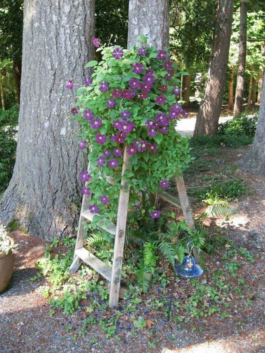50 unique and creative ladder in the garden design ideas and remodel (27)