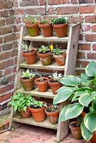 50 unique and creative ladder in the garden design ideas and remodel (32)