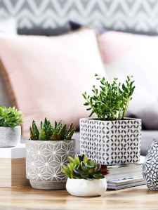 55 greeny indoor plants ideas that will purify your room's air (18)