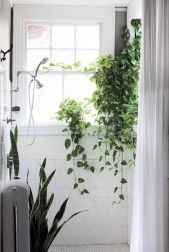55 greeny indoor plants ideas that will purify your room's air (28)