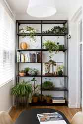 55 greeny indoor plants ideas that will purify your room's air (30)