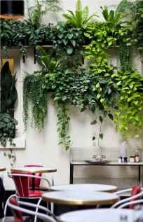 55 greeny indoor plants ideas that will purify your room's air (31)