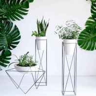 55 greeny indoor plants ideas that will purify your room's air (36)