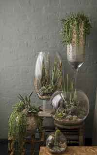 55 greeny indoor plants ideas that will purify your room's air (6)