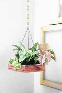 55 greeny indoor plants ideas that will purify your room's air (7)
