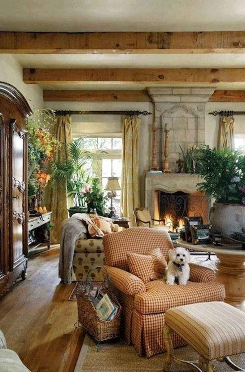 Cozy living room design & decorating ideas (54)