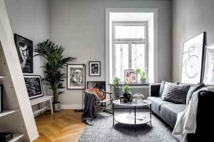 Elegant scandinavian interior decorating ideas for small spaces (21)