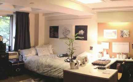 Most efficient dorm room ideas organization (25)