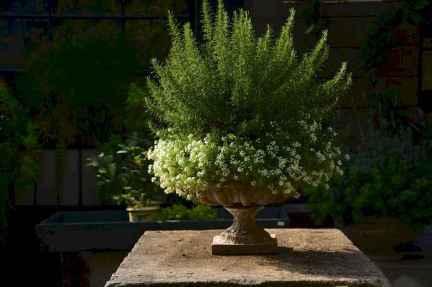 Adorable diy container herb garden design ideas (12)