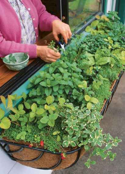 Adorable diy container herb garden design ideas (56)