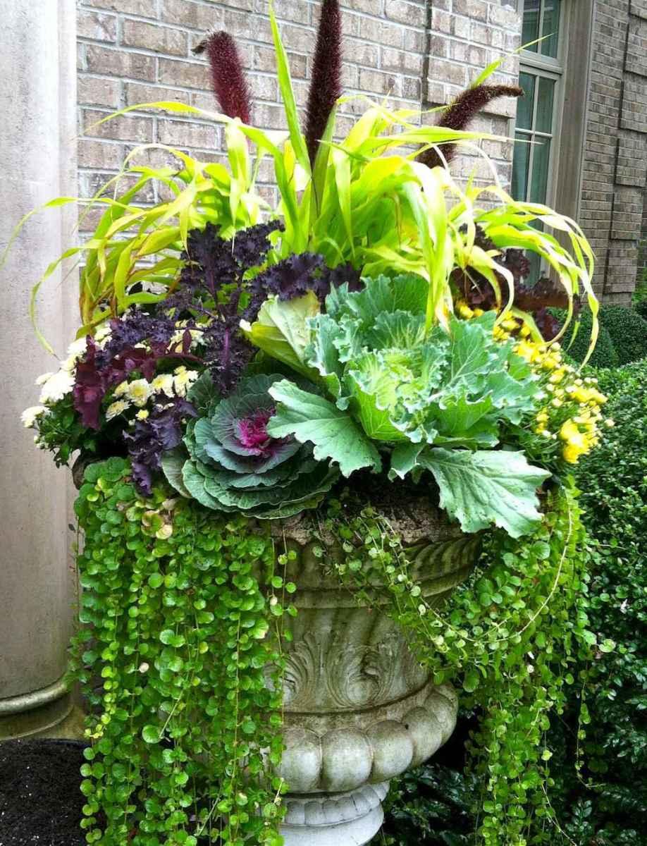Best summer container garden ideas 17