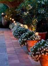 Best summer container garden ideas 40