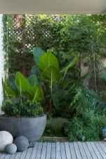 Best summer container garden ideas 8