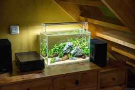 Relaxing aquascaping ideas for inspiration 10