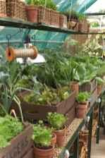 Smart garden shed organization ideas 13