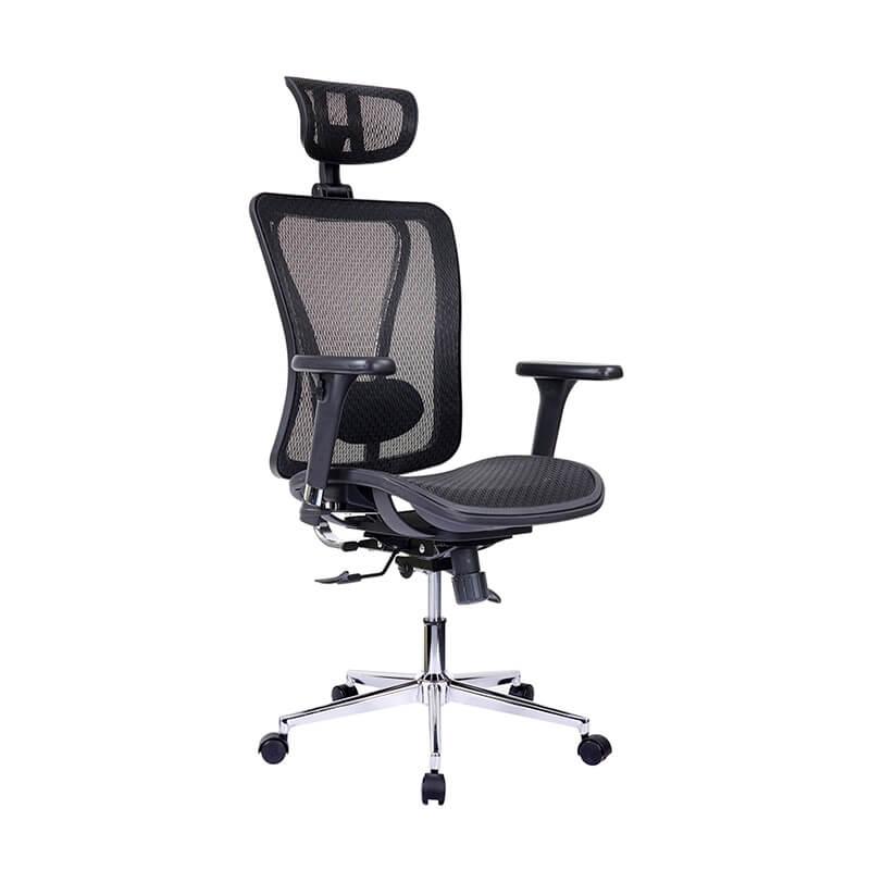 Ergonomic Executive Office Chair - 1