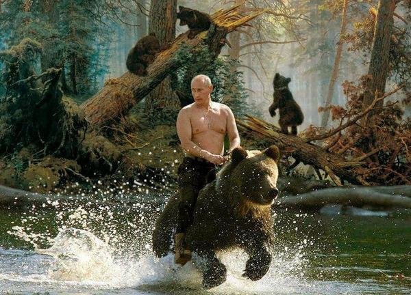 Putin riding a bear as it runs through a stream in the forrest.