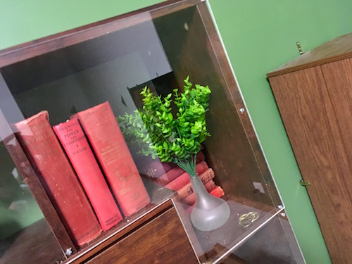 In-game: A bookcase with books a plant, and some coins all behind acrylic plasic shielding.