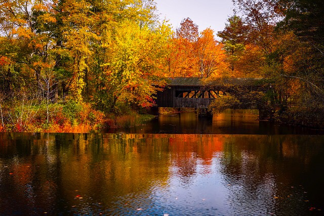 A covered bridge over a stream at the peak of fall.