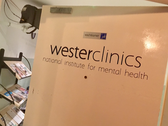 "In-game: the entry way for the ""Wester Clinics national institute for mental health,"" beyond it is a lobby."