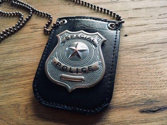"""In-game: A """"special police"""" badge."""