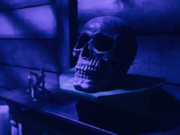 In-game: closeup of a human skull.