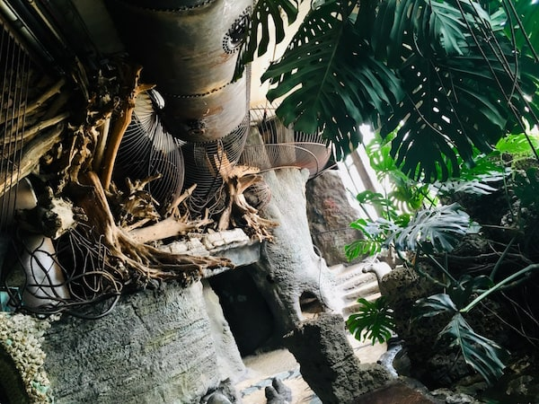 A jungle castle environment with metal tubes for climbing.
