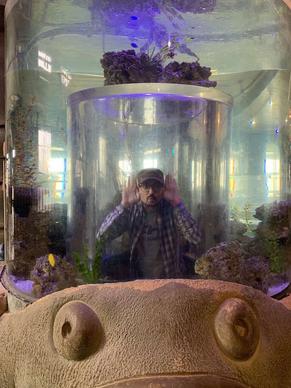 David inside of a fish tank pretending to be a fish.