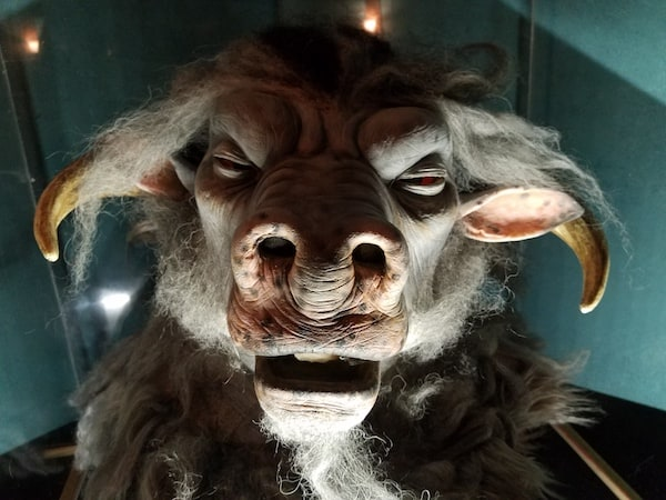 The head of a minotaur under glass.