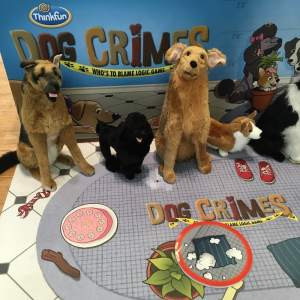A life sized Dog Crimes from Thinkfun.