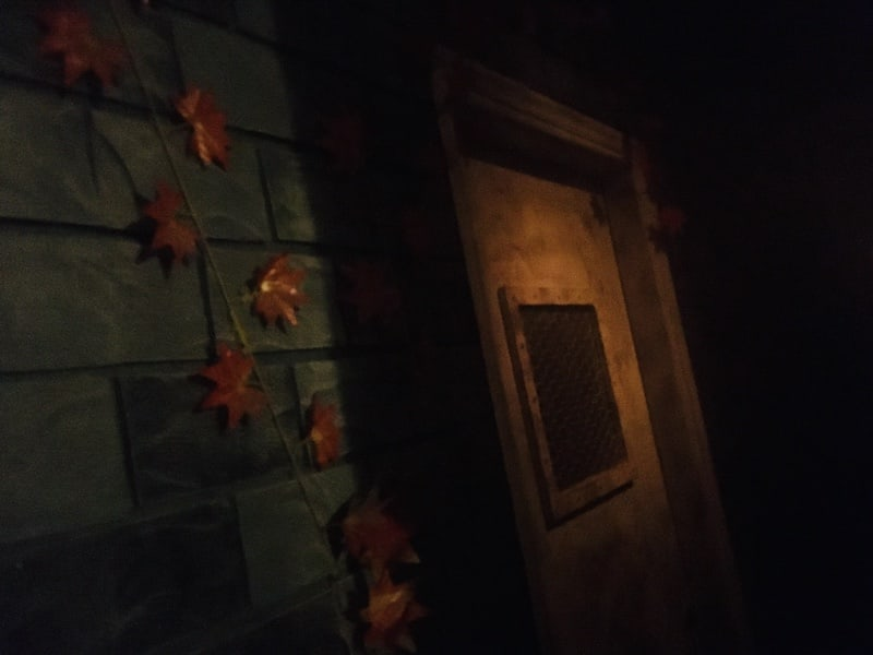 In-lobby: A stone wall covered in orange leaves beside an old door.