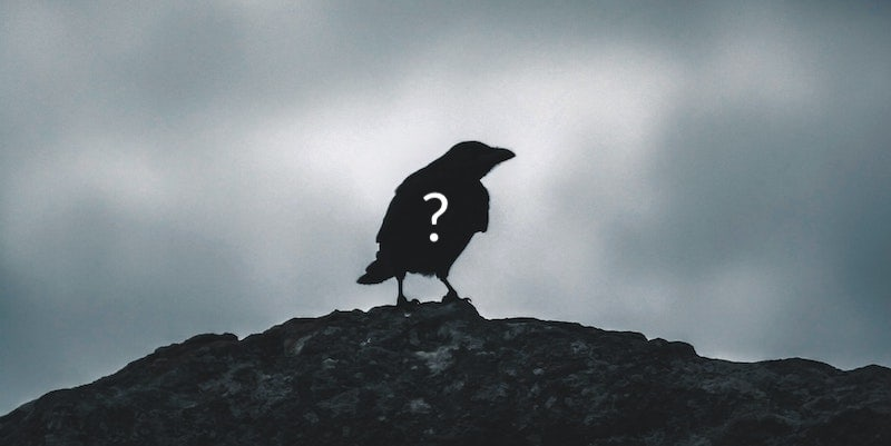 A raven with a question mark on it.