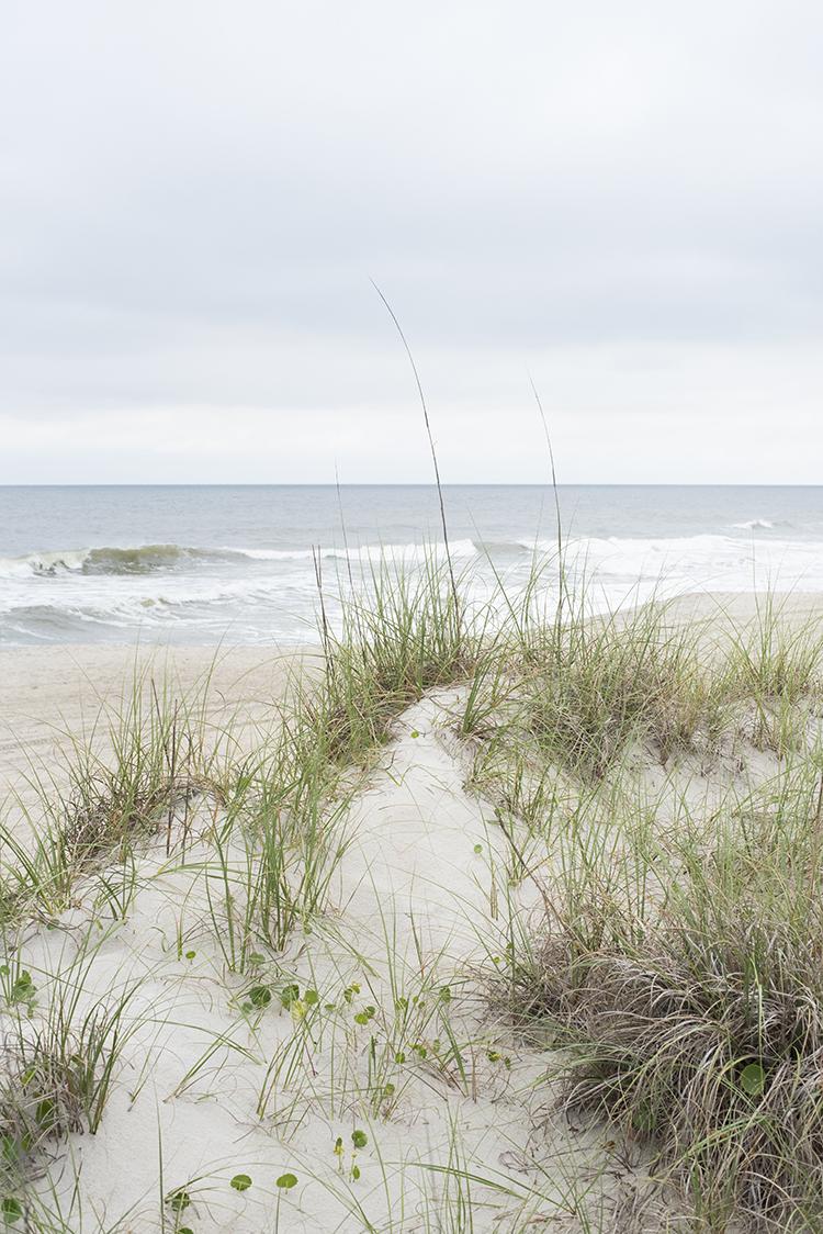 Dunes at Carolina Beach