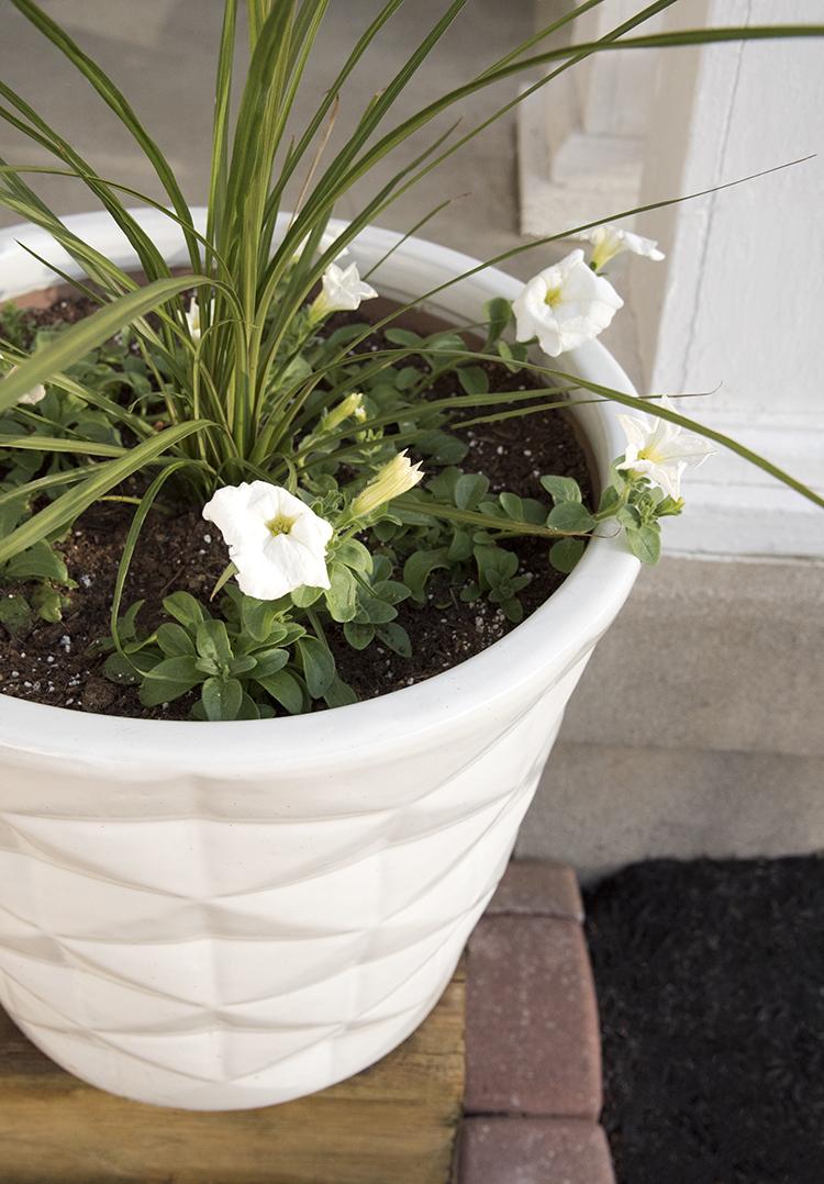 Geometric Flower Planter