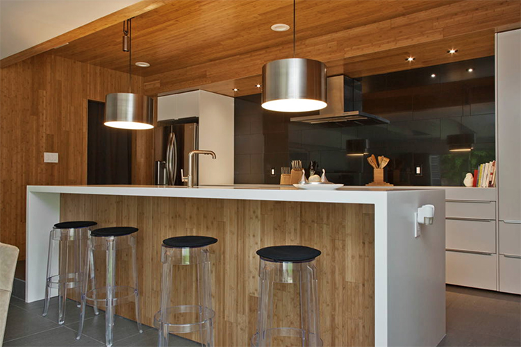 Modern Kitchen in Austin
