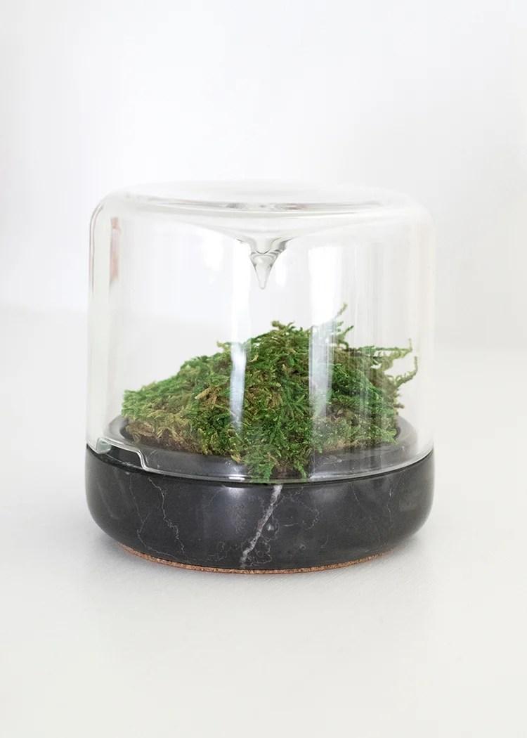 Micro Climate DIY